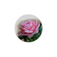 Rose Pink Flowers Pink Saturday Golf Ball Marker (10 Pack)