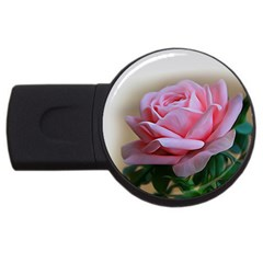 Rose Pink Flowers Pink Saturday Usb Flash Drive Round (4 Gb)