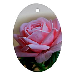Rose Pink Flowers Pink Saturday Oval Ornament (two Sides)