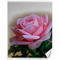 Rose Pink Flowers Pink Saturday Canvas 12  X 16