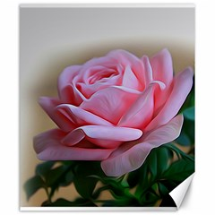 Rose Pink Flowers Pink Saturday Canvas 20  X 24