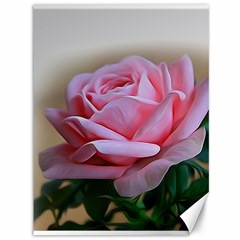 Rose Pink Flowers Pink Saturday Canvas 36  X 48