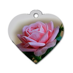 Rose Pink Flowers Pink Saturday Dog Tag Heart (two Sides)
