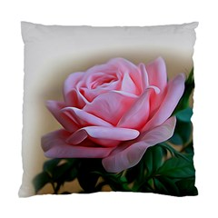Rose Pink Flowers Pink Saturday Standard Cushion Case (one Side)