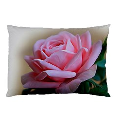 Rose Pink Flowers Pink Saturday Pillow Case