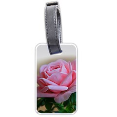 Rose Pink Flowers Pink Saturday Luggage Tags (two Sides)