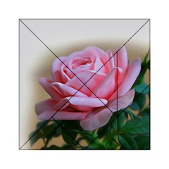 Rose Pink Flowers Pink Saturday Acrylic Tangram Puzzle (6  X 6 )