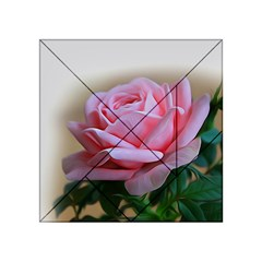 Rose Pink Flowers Pink Saturday Acrylic Tangram Puzzle (4  X 4 )
