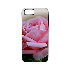 Rose Pink Flowers Pink Saturday Apple Iphone 5 Classic Hardshell Case (pc+silicone)