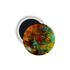 Mixed Abstract 1.75  Magnets