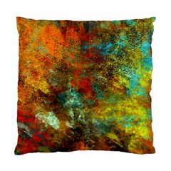 Mixed Abstract Standard Cushion Case (two Sides)
