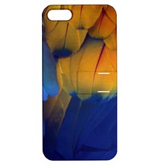 Parrots Feathers Apple Iphone 5 Hardshell Case With Stand