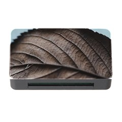 Leaf Veins Nerves Macro Closeup Memory Card Reader With Cf