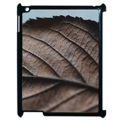 Leaf Veins Nerves Macro Closeup Apple Ipad 2 Case (black)