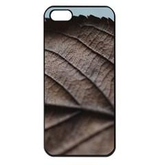 Leaf Veins Nerves Macro Closeup Apple Iphone 5 Seamless Case (black)