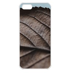 Leaf Veins Nerves Macro Closeup Apple Iphone 5 Seamless Case (white)