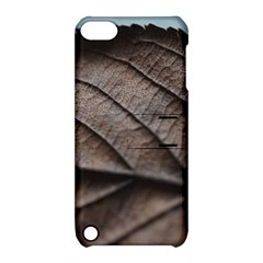 Leaf Veins Nerves Macro Closeup Apple Ipod Touch 5 Hardshell Case With Stand