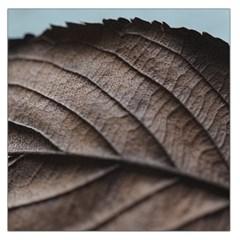 Leaf Veins Nerves Macro Closeup Large Satin Scarf (Square)