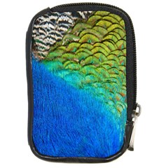 Blue Peacock Feathers Compact Camera Cases