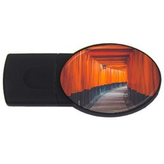 Architecture Art Bright Color Usb Flash Drive Oval (2 Gb)