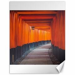 Architecture Art Bright Color Canvas 18  X 24