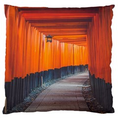 Architecture Art Bright Color Large Cushion Case (two Sides)