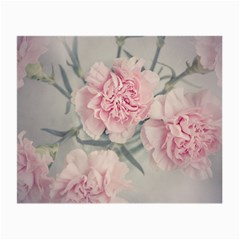 Cloves Flowers Pink Carnation Pink Small Glasses Cloth