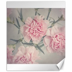Cloves Flowers Pink Carnation Pink Canvas 8  X 10