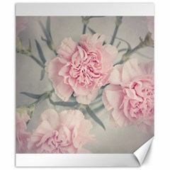Cloves Flowers Pink Carnation Pink Canvas 20  X 24