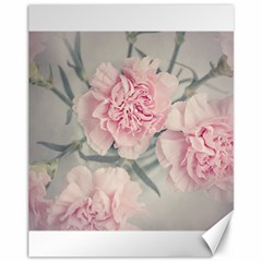 Cloves Flowers Pink Carnation Pink Canvas 11  X 14
