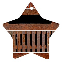 Stainless Structure Collection Star Ornament (two Sides)