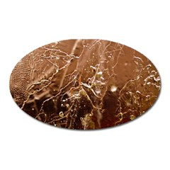 Ice Iced Structure Frozen Frost Oval Magnet