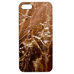 Ice Iced Structure Frozen Frost Apple Iphone 5 Hardshell Case With Stand