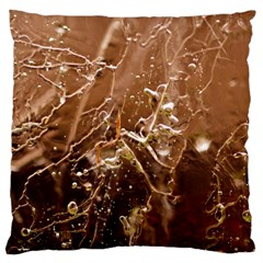 Ice Iced Structure Frozen Frost Large Flano Cushion Case (one Side)