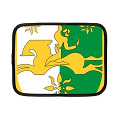 Coat Of Arms Of Abkhazia Netbook Case (small)