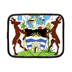 Coat Of Arms Of Antigua And Barbuda Netbook Case (small)