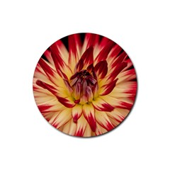 Bloom Blossom Close Up Flora Rubber Round Coaster (4 Pack)