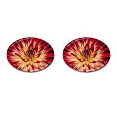 Bloom Blossom Close Up Flora Cufflinks (Oval)