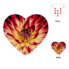Bloom Blossom Close Up Flora Playing Cards (heart)