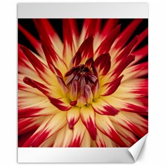 Bloom Blossom Close Up Flora Canvas 16  X 20