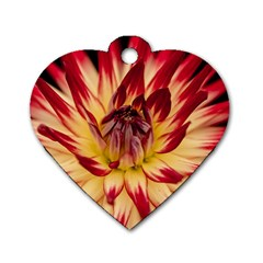 Bloom Blossom Close Up Flora Dog Tag Heart (two Sides)