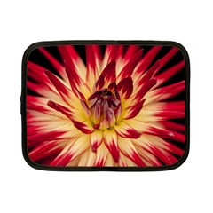 Bloom Blossom Close Up Flora Netbook Case (small)