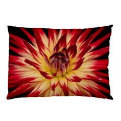 Bloom Blossom Close Up Flora Pillow Case
