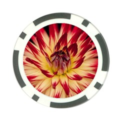 Bloom Blossom Close Up Flora Poker Chip Card Guards (10 pack)