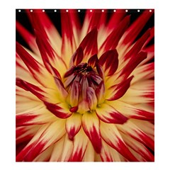 Bloom Blossom Close Up Flora Shower Curtain 66  X 72  (large)