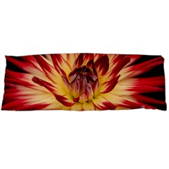 Bloom Blossom Close Up Flora Body Pillow Case Dakimakura (two Sides)