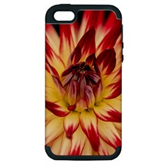 Bloom Blossom Close Up Flora Apple Iphone 5 Hardshell Case (pc+silicone)