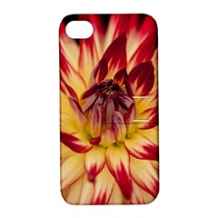 Bloom Blossom Close Up Flora Apple Iphone 4/4s Hardshell Case With Stand