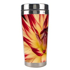 Bloom Blossom Close Up Flora Stainless Steel Travel Tumblers