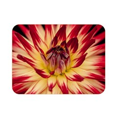 Bloom Blossom Close Up Flora Double Sided Flano Blanket (mini)